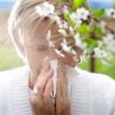 Tips to enjoy the spring  in pollen allergy season for sufferers