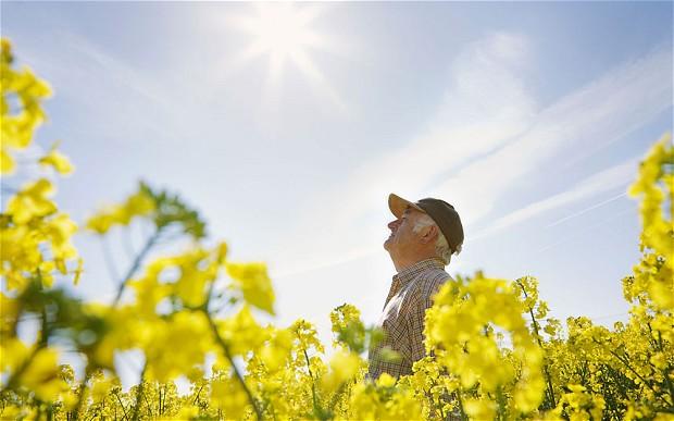 Sunstroke in seniors