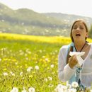 Allergic asthma and hay fever