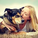 Homeopathy for Pets