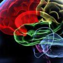 Dementia, the disease of forgetfulness