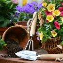 Gardening is a pleasure without remorse