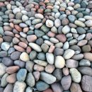 Natural ways to keep kidney stones at bay