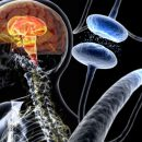 Folate deficiency and Parkinson disease