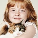 Transmitted by cats infections – a risk?