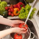 Lower risk of Salmonella infection